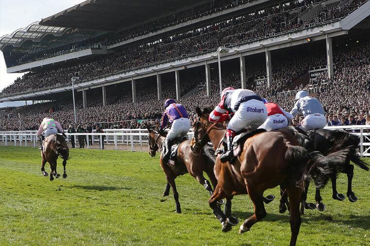 Cheltenham festival horse racing