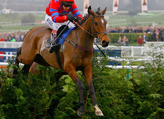 Balthazar King leading the Cross Country Steeple Chase Race