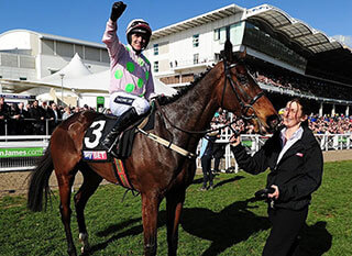 Douvan after winning the Supreme Novices Hurdle at Cheltenham