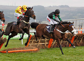 Falling fence during last year's National Hunt Chase