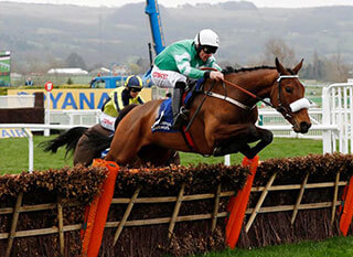 Horse and jockey during a jump in the Pertemps Hurdle at the Cheltenham Festival