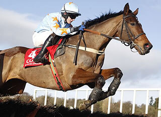Horse jumping over the fence during last year's National Hunt Chase