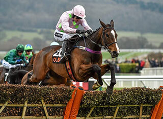 Jockey and horse during the 2017 OLBG Mares Hurdle Race