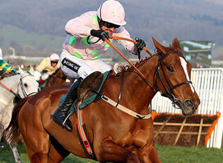 Limini goes up against Vroum Vroum Mag in last year's Mares' Hurdle