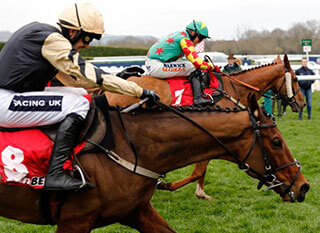 Nichols Canyon seeking the best performance possible at the Stayers Hurdle