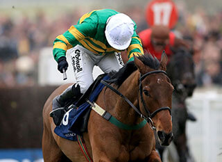 On The Fringe at the 2017 Foxhunter Chase