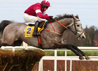 Petit Mouchoir is among Arkle Steeple Chase Favourites.