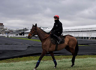 Rider at the Cheltenham racecourse on an empty and cloudy day