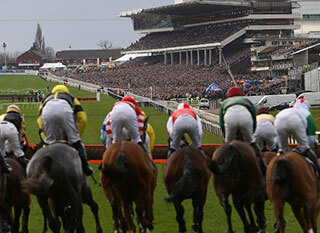 Riders during the Novices' Handicap Chase at Cheltenham Festival