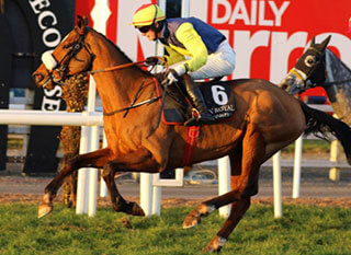 Runfordave (left) pictured at the Martin Pipe Handicap Hurdle last year