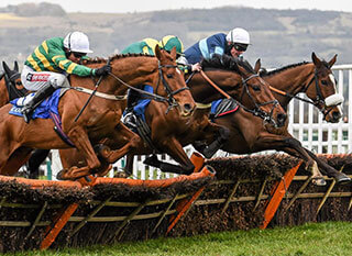 Runners at a Champion Hurdle race during the Cheltenham Festival