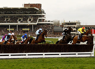 Runners before a jump during the 2016 Champion Hurdle
