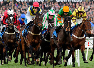 Stunning picture of runners and jockeys while starting the Cheltenham Gold Cup