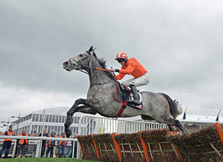 Two horses battling in a jumping race at Cheltenham