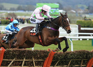 Vroum Vroum Mag trying to defend her Mares' Hurdle crown in last year's event