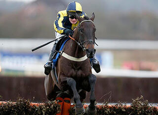 Willoughby Court was a smart prospect for Ben Pauling at last year's Ballymore Novices' Hurdle
